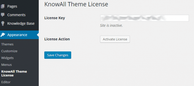 Enable automatic updates and support by entering your theme license code